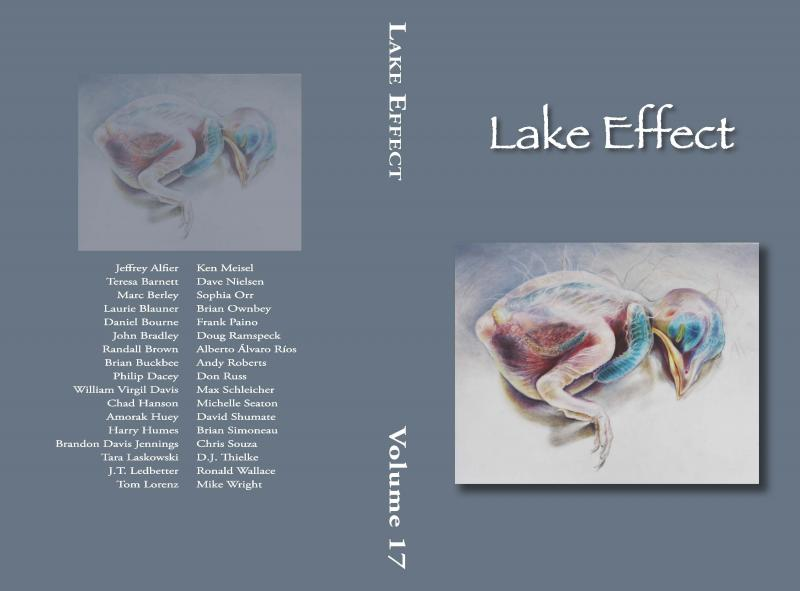 Cover of Lake Effect Spring 2013