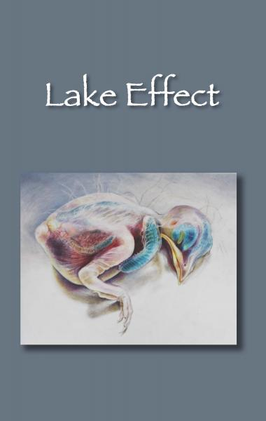 Lake Effect, Spring 2013, Volume 17, Cover Photo