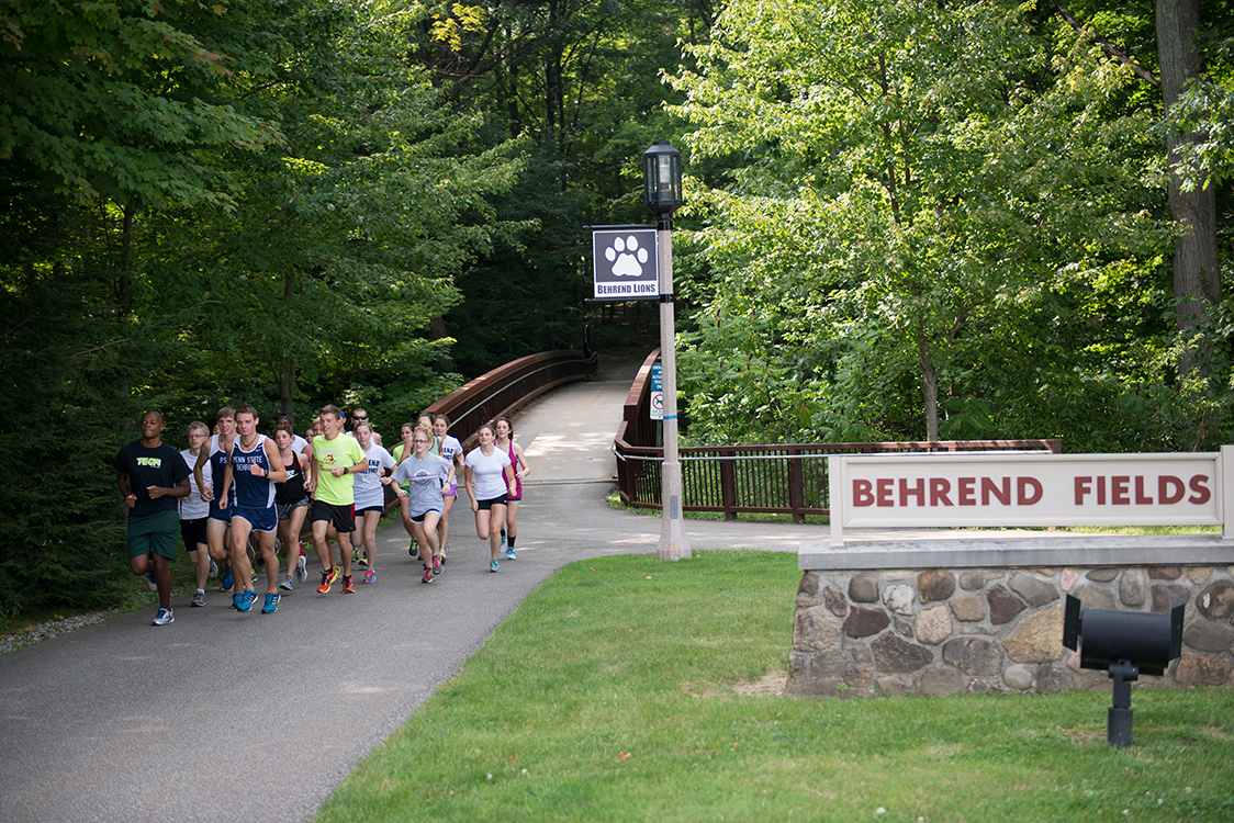 Bridge to Behrend Fields