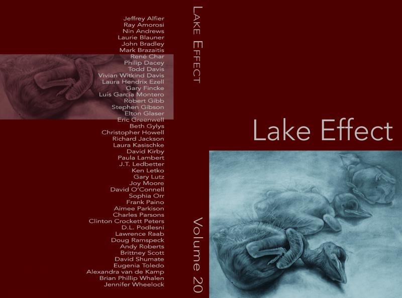 Cover of Lake Effect Vol. 20