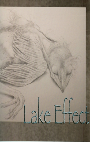 Lake Effect, Spring 2011, Volume 15, Cover Photo