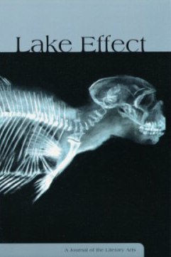 Lake Effect, Srinf 2005, Volume 9, Front Cover Photo