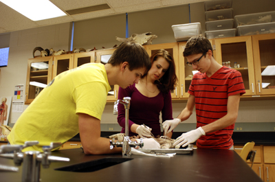 Anatomy/Ecology Teaching Lab