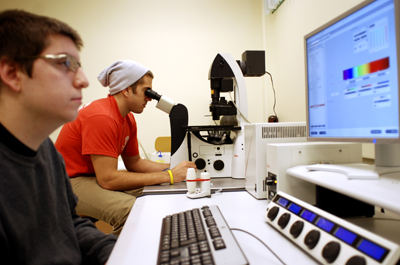 Confocal Microscope Lab
