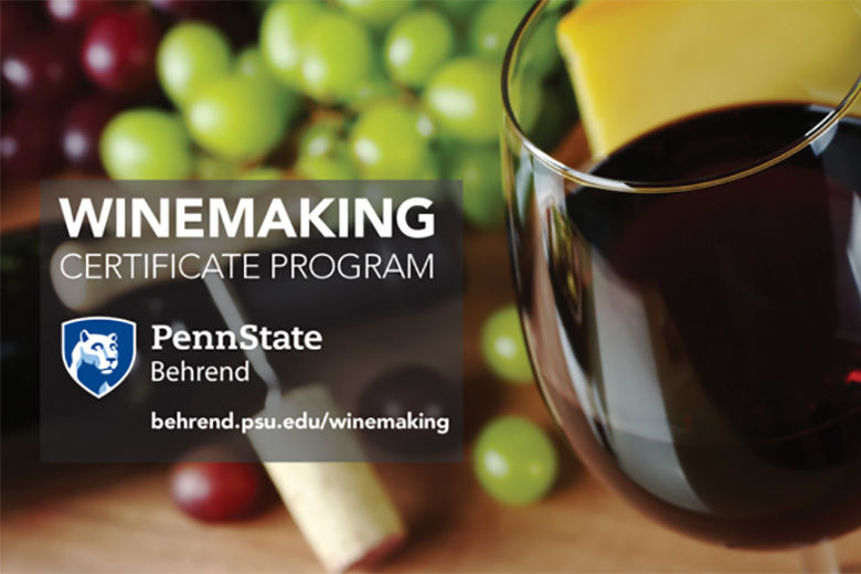 Winemaking Certificate Program text on photo of grapes, cork, and wine glass