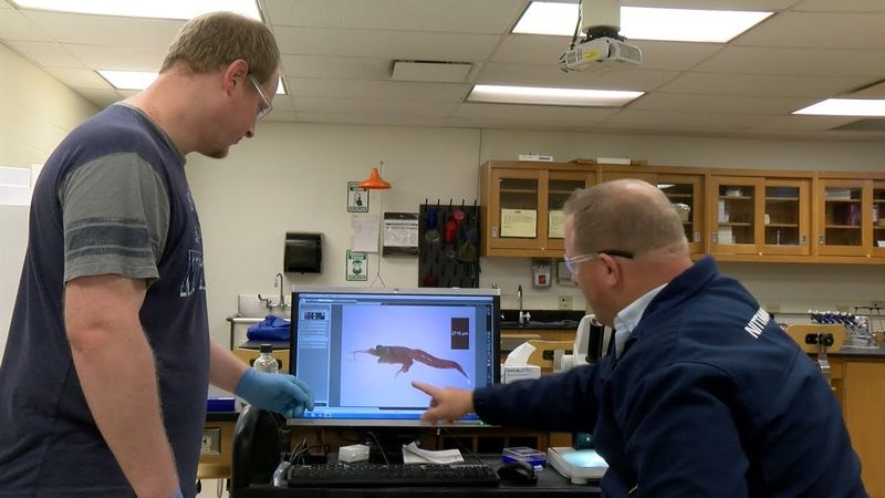 Behrend research team discovers invasive species in Lake Erie