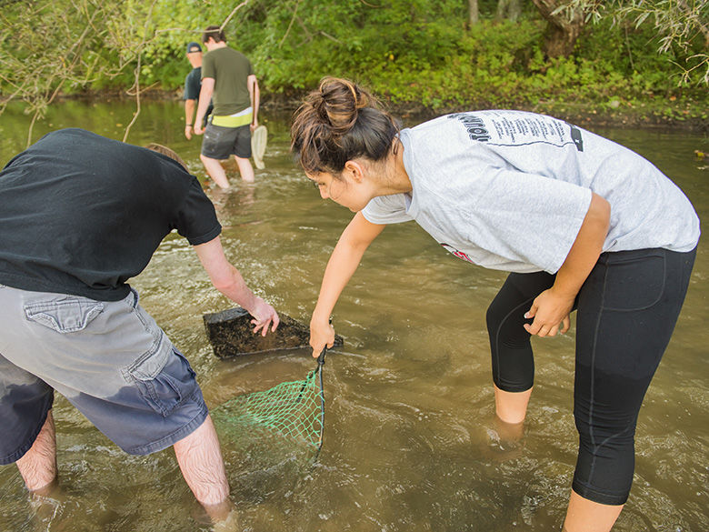 Students collect samples using a net.