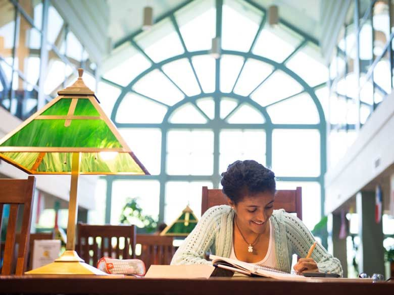 A student studies in the Lilley Library on the Penn State Behrend campus.
