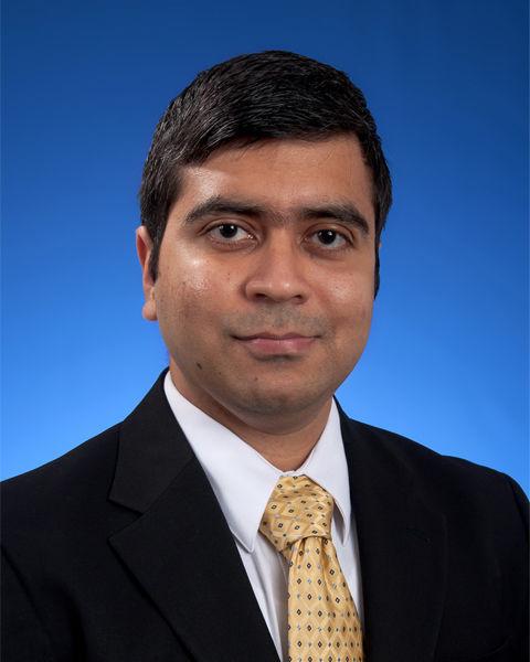Sourish Sarkar, Ph.D.