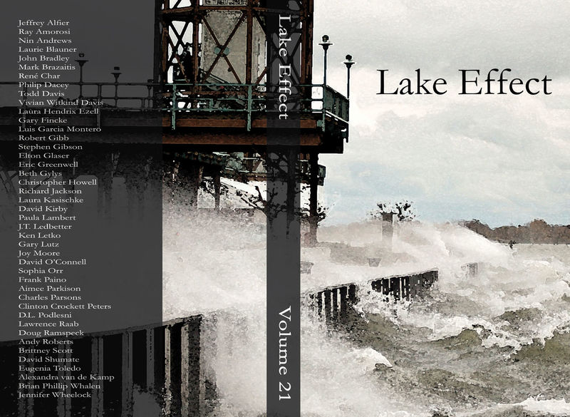 Lake Effect Volume 21 cover