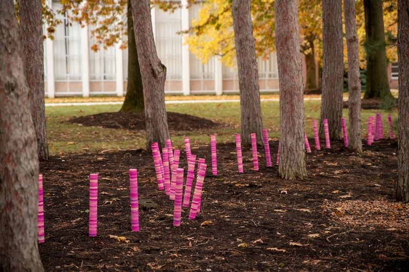 "A detail shot of the ""Colorwalk"" arts installation at Penn State Behrend"