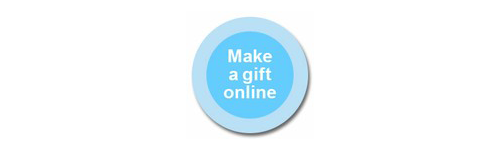 Make a gift online