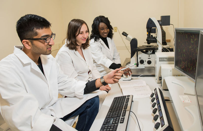 Students in the School of Science work with the college's confocal microscope.