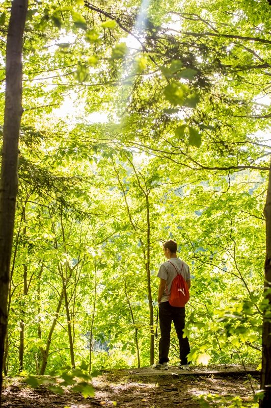 A student looks out from an overlook in Wintergreen Gorge.