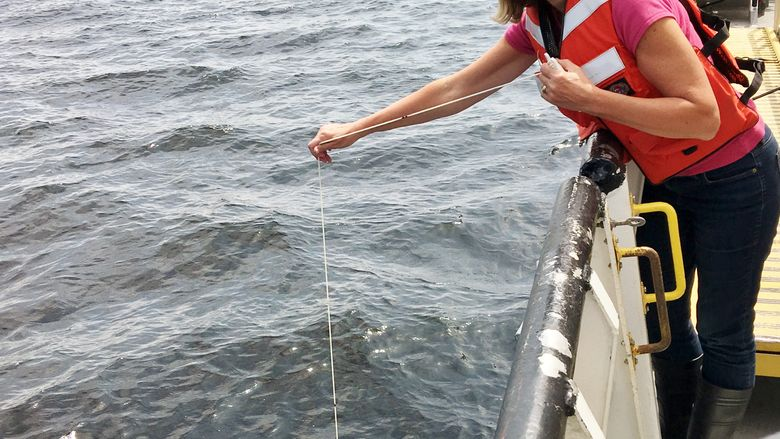Greener Behrend Director Ann Quinn conducts research aboard the R/V Lake Guardian