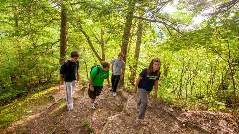 Four students walk in the woods of Wintergreen Gorge.