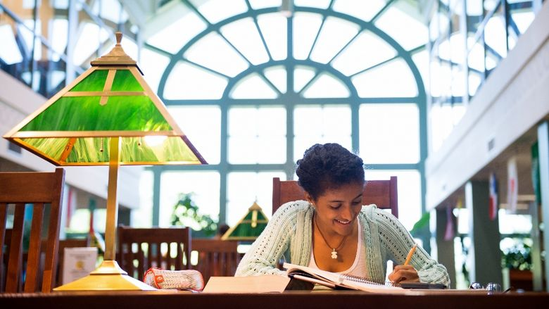 A student reads in the John M. Lilley Library at Penn State Behrend.