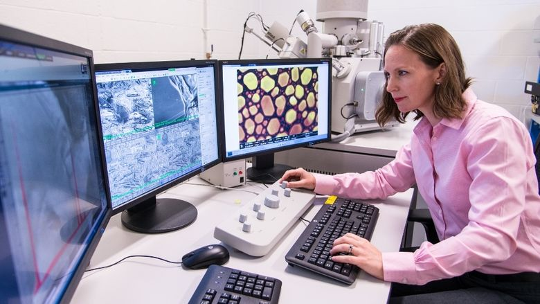 Penn State Behrend professor Alicyn Rhoades works on the college's environmental scanning electron microscope.
